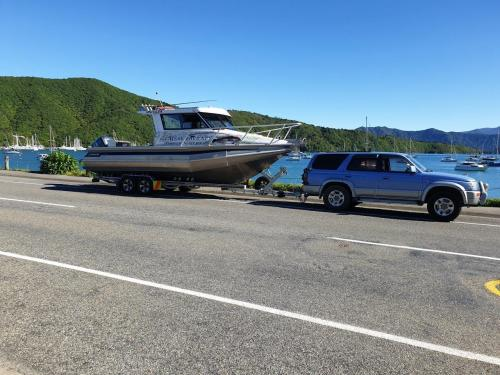 Charter Boat / Yacht - Reel Therapy, Waikawa Bay (Marlborough)